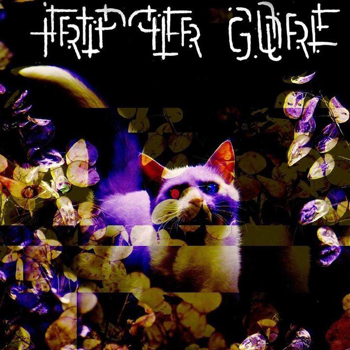 Tripper Gore Tour Dates