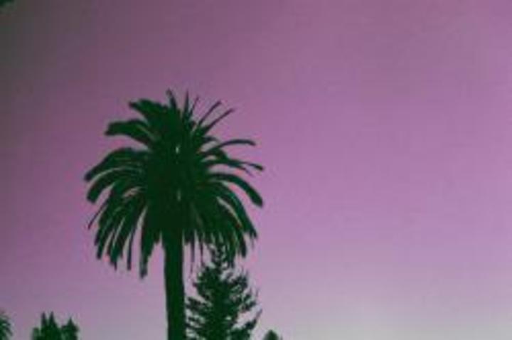 Palmeira Tour Dates
