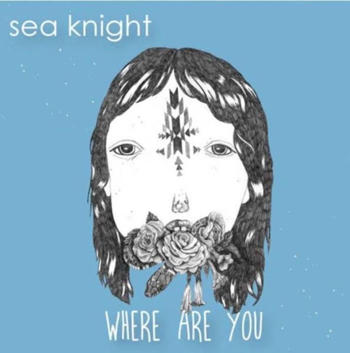 sea knight @ Rickshaw Stop - San Francisco, CA