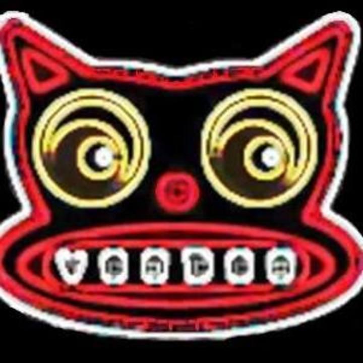 Voodoo Cats Tour Dates