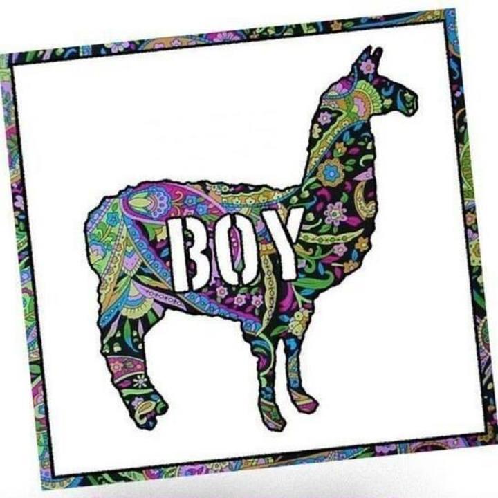 Llama Boy Tour Dates