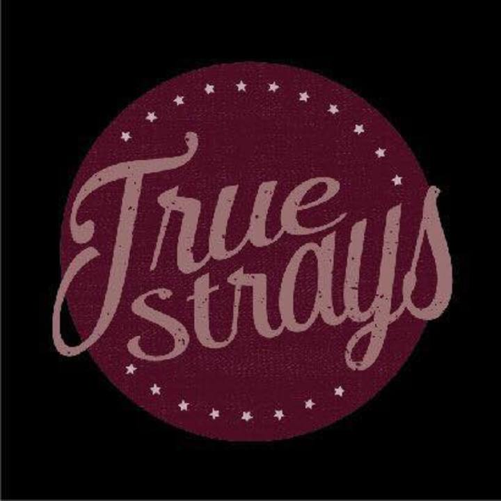 True Strays @ No. 1 Harbourside - Bristol, United Kingdom