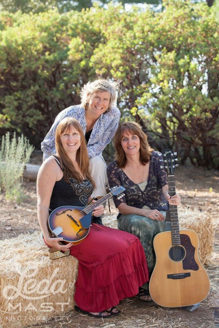 Magnolia Rhythm Trio Tour Dates