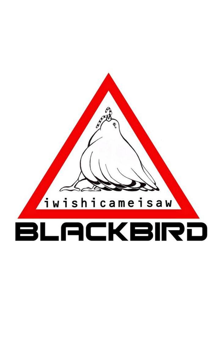 BLACKBIRDband Tour Dates