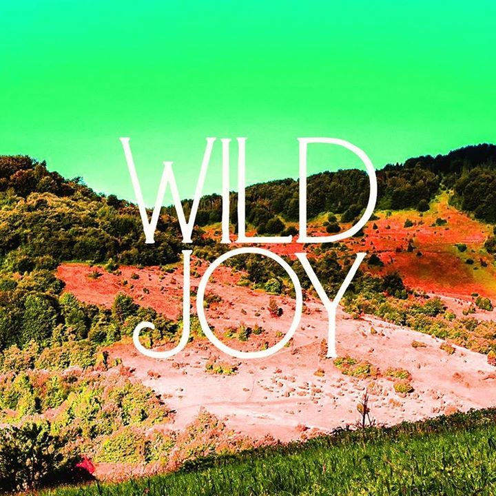 Wild Joy Tour Dates