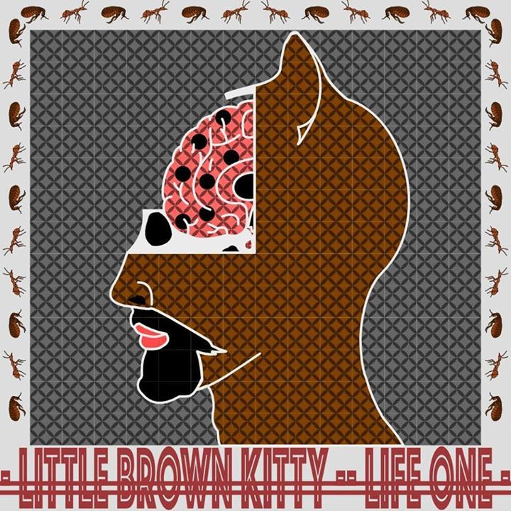 Little Brown Kitty Tour Dates