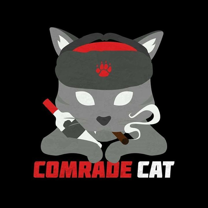 Comrade Cat Tour Dates