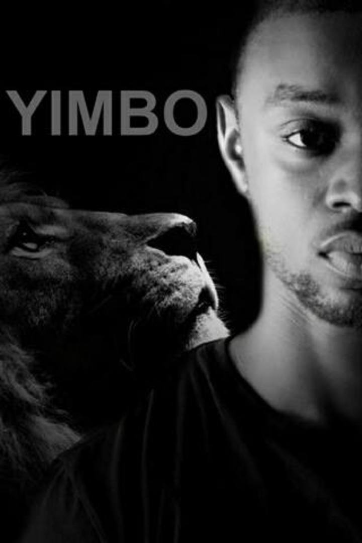 Yimbo Tour Dates