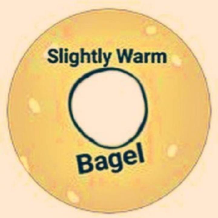 Slightly Warm Bagel Tour Dates
