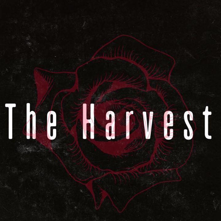 K J O'Hara & The Harvest Tour Dates