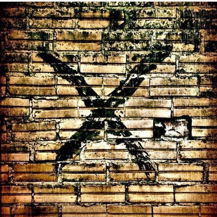 TERMINAL X Tour Dates