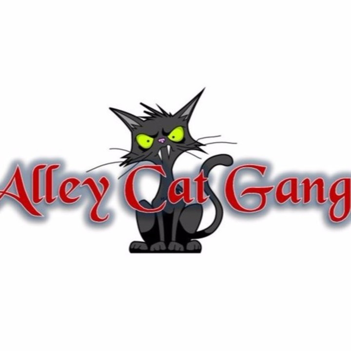 Alley Cat Gang Tour Dates