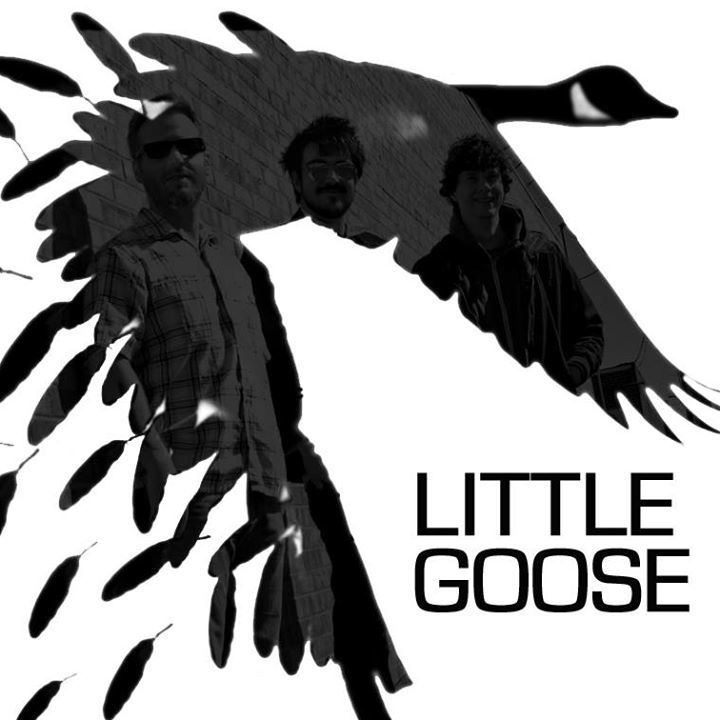Little Goose Tour Dates