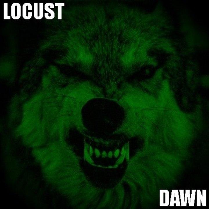 Locust Dawn Tour Dates