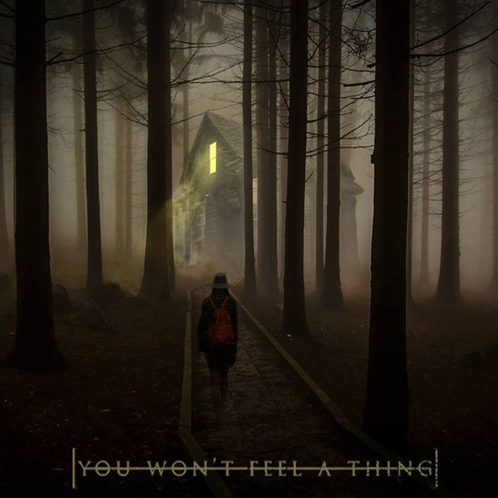 You Won't Feel a Thing Tour Dates