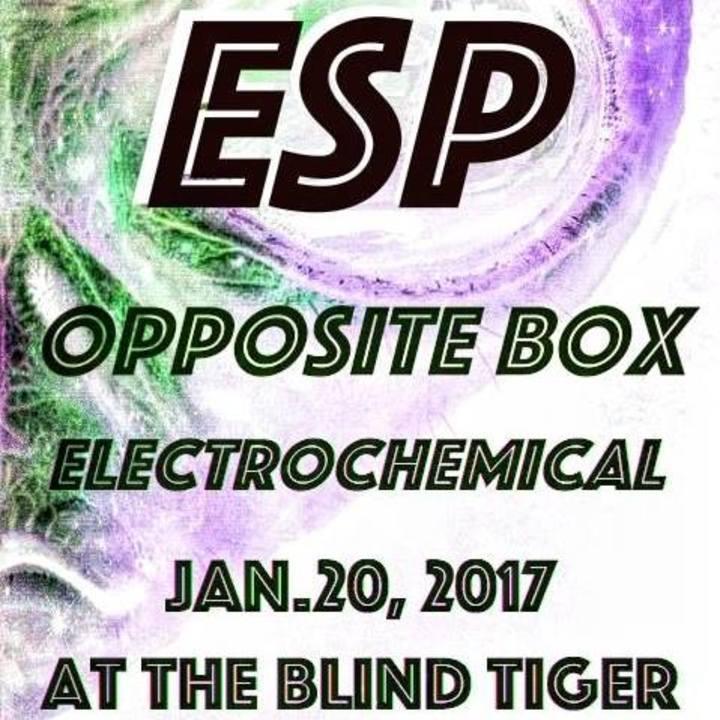 electric soul pandemic @ Double Door Inn - Charlotte, NC