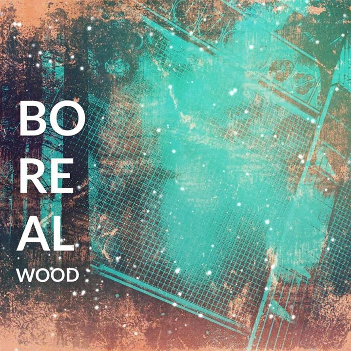 Boreal Wood Tour Dates