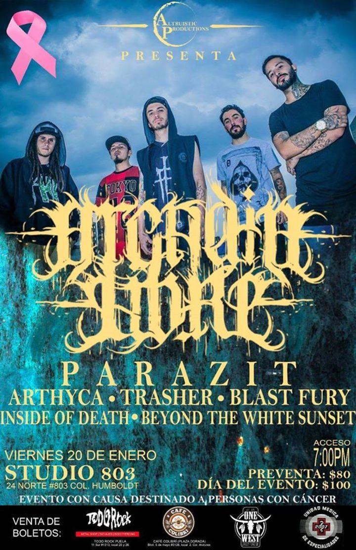 Arthyca Tour Dates