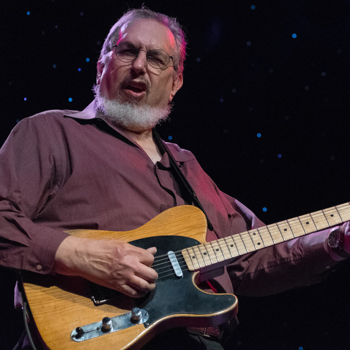 David Bromberg @ Heights Theater - Houston, TX