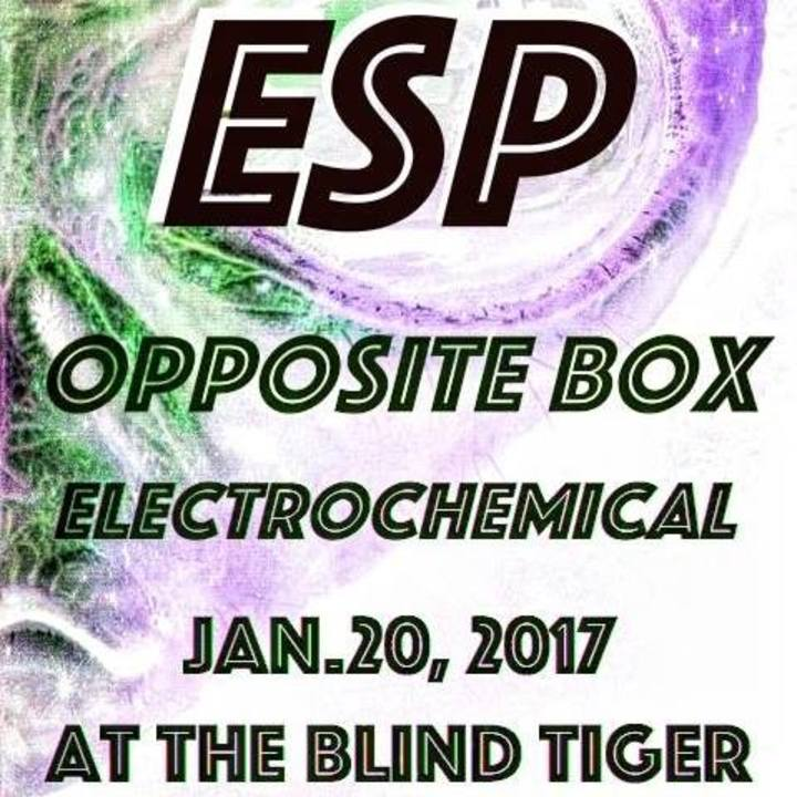 electric soul pandemic @ The Blind Tiger NC - Greensboro, NC