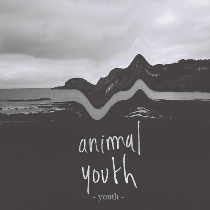 Animal Youth Tour Dates