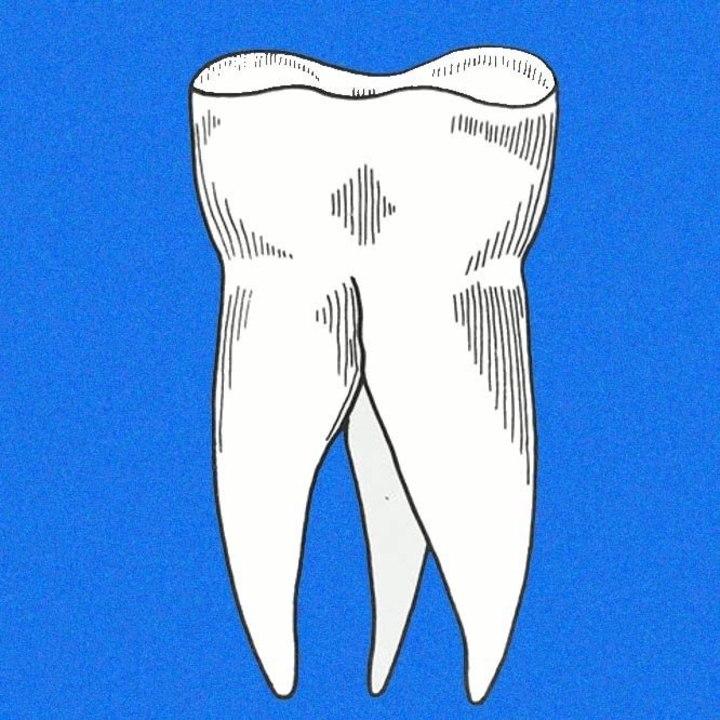 Les dents Tour Dates