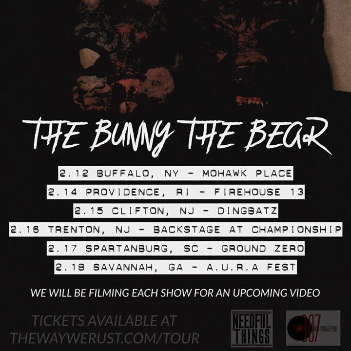 The Bunny The Bear Tour Dates