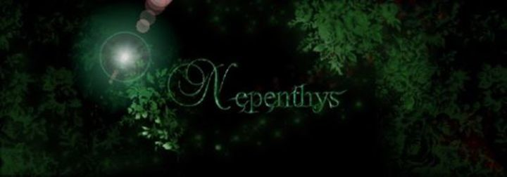 Nepenthys Tour Dates