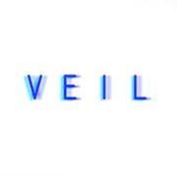 Veil Tour Dates