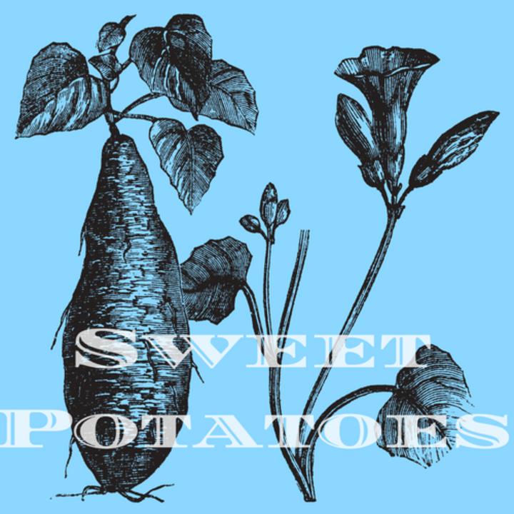 Sweet Potatoes Music @ Ten Italian Cafe - Richmond, VA
