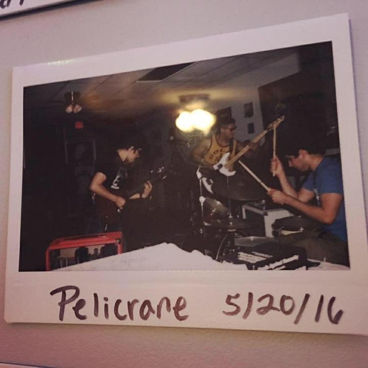 Pelicrane Tour Dates