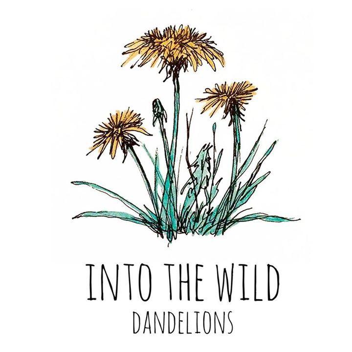 Into the Wild Tour Dates