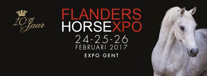 DJ Daddy Cool @ FLANDERS EXPO - Gent, Belgium