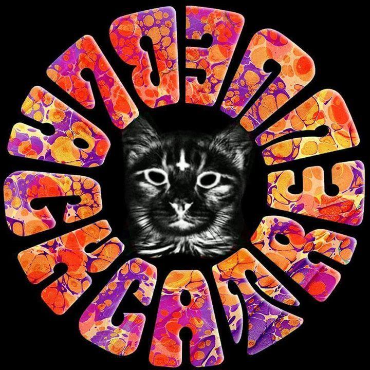 Black Cat Revue Tour Dates