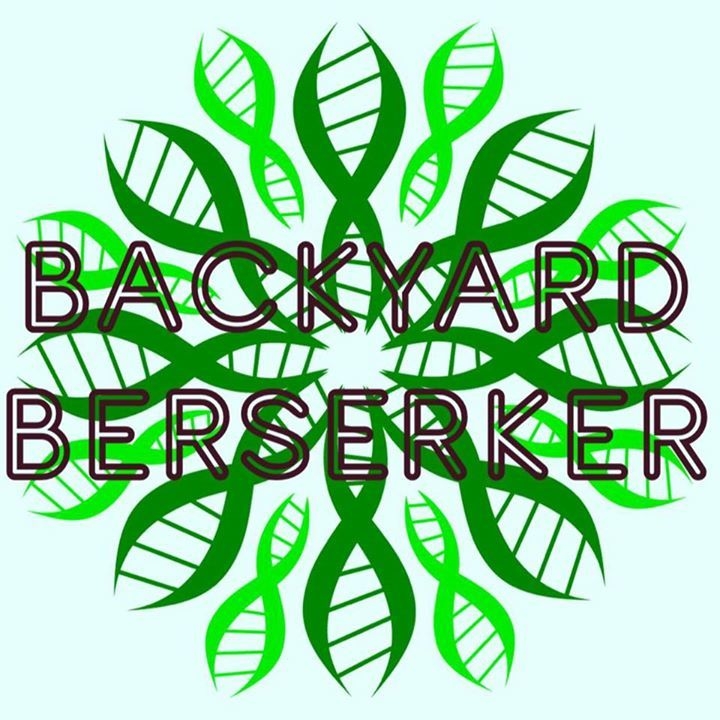 Backyard Berserker @ People's Stage Buena Vista  - Buena Vista, CO