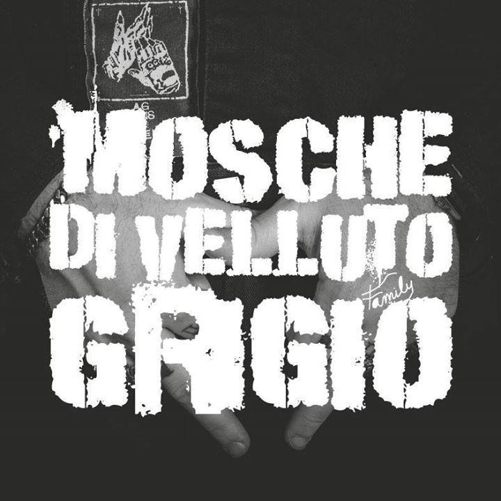 Mosche Di Velluto Grigio @ NASTY BOYS SALOON - Treviso, Italy