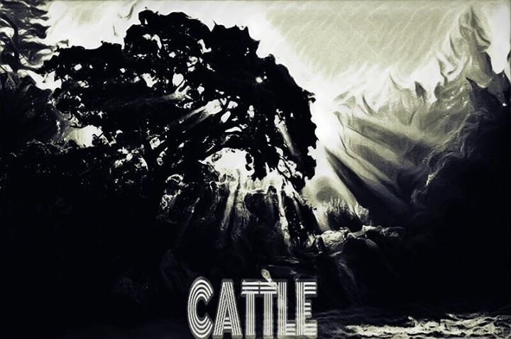 Cattle @ The Empire - Middlesbrough, United Kingdom