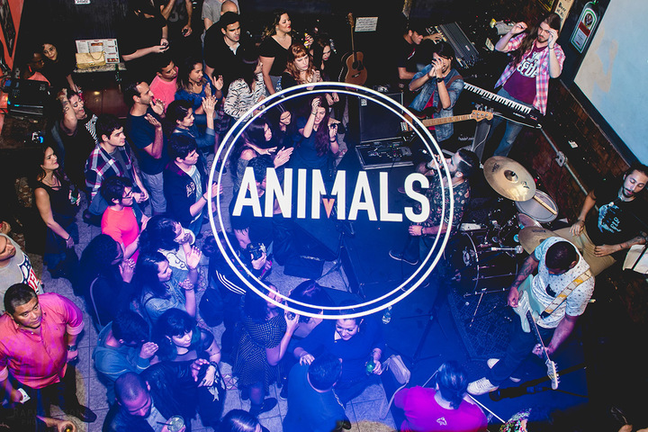 Banda Animals Tour Dates