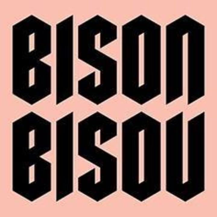 Bison Bisou @ LAPENICHE - Chalon Sur Saone, France