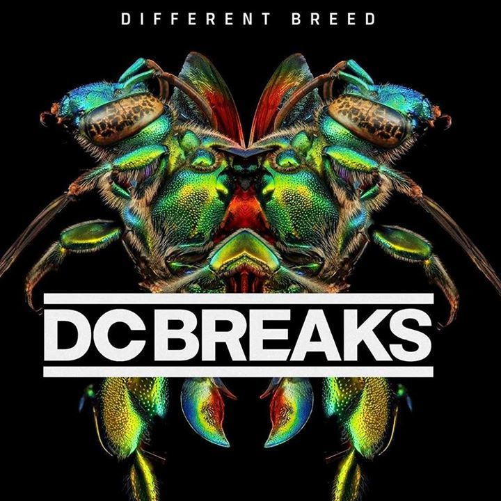 DC Breaks Tour Dates