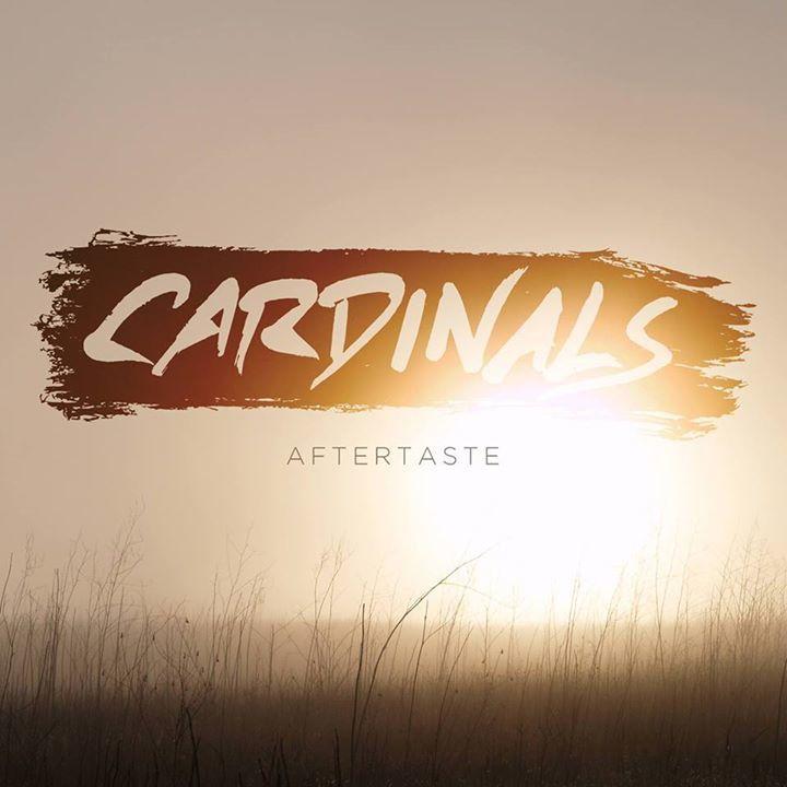 Cardinals @ The Center For Arts Natick - Natick, MA