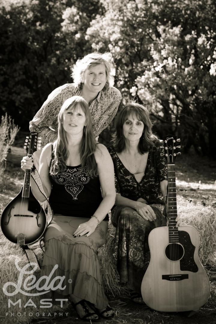 Magnolia Rhythm Trio @ Big Trees Park - Big Trees, CA
