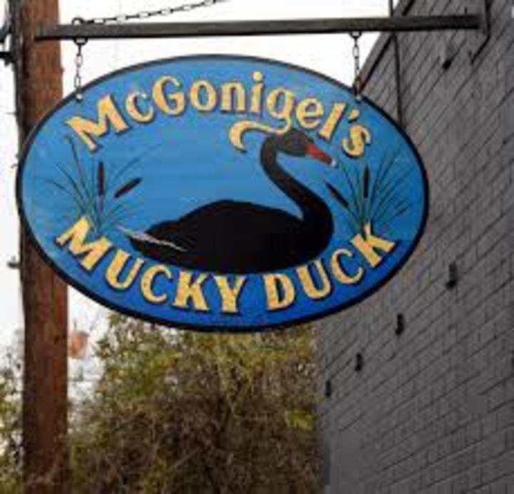 Red Elvises @ McGonigel's Mucky Duck- 2425 Norfolk St. - Houston, TX