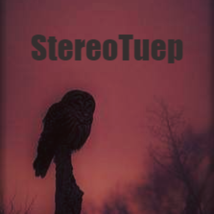 StereoTüp Tour Dates