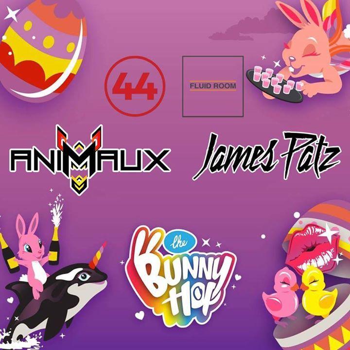 Animaux Tour Dates