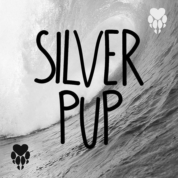 Silver Pup Tour Dates