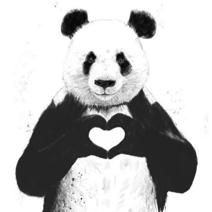 Big Fat Panda Tour Dates