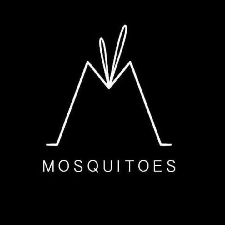 Mosquitoes Tour Dates