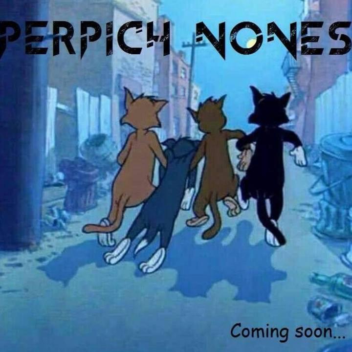 Perpich Nones Tour Dates