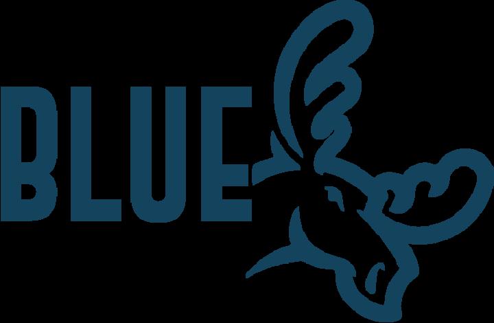 Bluemoose Tour Dates